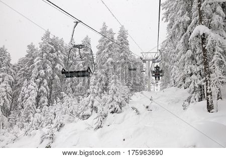 Skiers on a ski-lift in snowy forest