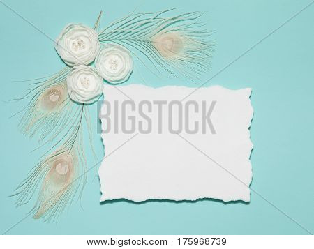 Light Mint Horizontal Background With Handmade Gentle White Ranunculus Flowers and Peacock Feathers Lying Flat Top View. Have an Empty Paper Rectangular Place For Your Text.