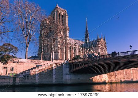 Picturesque view of Ile de la Cite, Seine River and Cathedral of Notre Dame de Paris in the winter morning, France