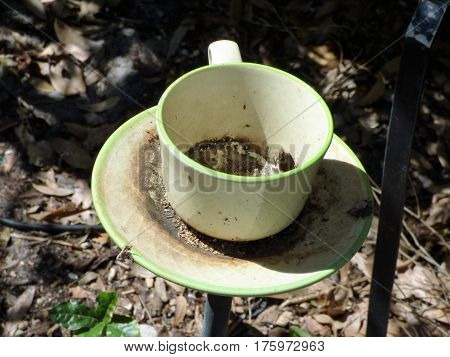 A cup and saucer mounted a pedestal as outdoor ornament in Florida park.