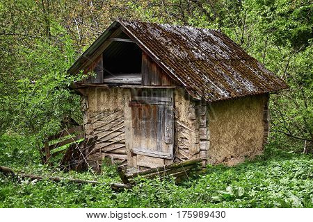An old dugout in the green forest.