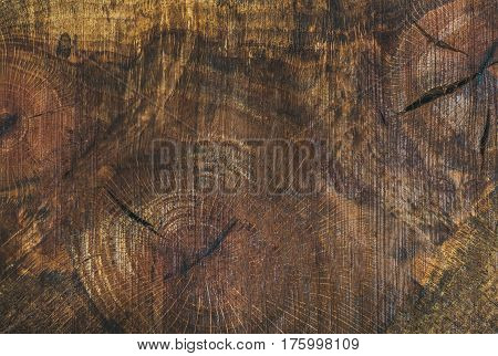 Texture saw cut of the wood logs. Almond wood slab board texture and background