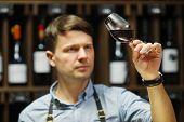 Bokal of red wine on background of male sommelier appreciating color, quality, flavor and sediments of drink. Professional degustation expert in winemaking. poster