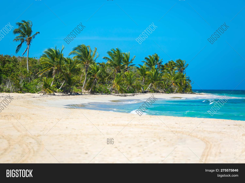 Exotic Carribean S Image Photo