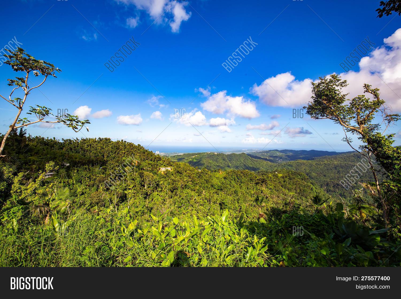 el yunque national image photo free