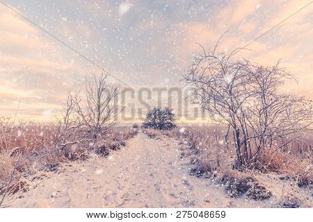 Snow Falling On A Snowy Winter Trail In The Morning Sunrise