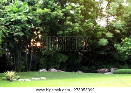 Blurred Garden Park Background With Tree Forest And Grass Lawn Under Light Shine Of Sun, Image Of Ga