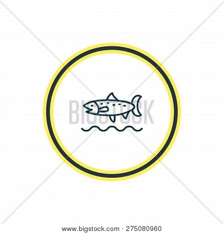 Vector Illustration Of Trout Fish Icon Line. Beautiful Naval Element Also Can Be Used As Codfish Ico