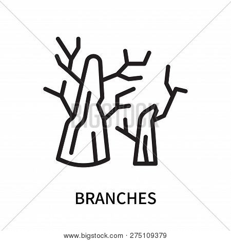 Branches Icon Isolated On White Background. Branches Icon Simple Sign. Branches Icon Trendy And Mode