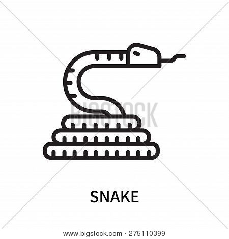 Snake Icon Isolated On White Background. Snake Icon Simple Sign. Snake Icon Trendy And Modern Symbol