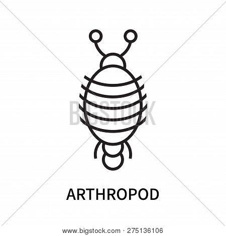 Arthropod Icon Isolated On White Background. Arthropod Icon Simple Sign. Arthropod Icon Trendy And M