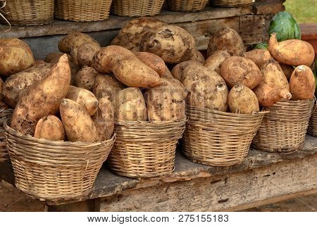 Yam On Display For A Sale. Market Stall. Organic Food. Agricultural Industry. Beautiful Image.
