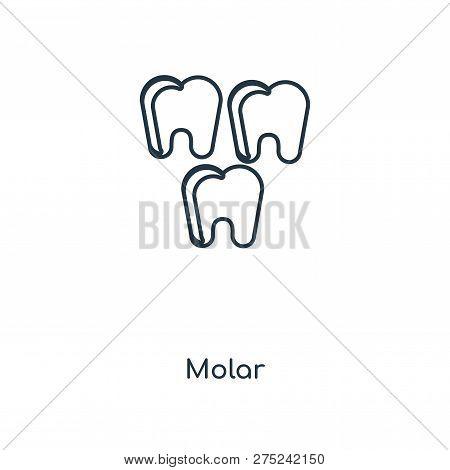 Molar Icon In Trendy Design Style. Molar Icon Isolated On White Background. Molar Vector Icon Simple