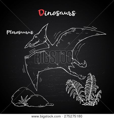 Vector Pterosaur With Plant And Stone On Chalk Blackboard.