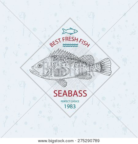 Best Fresh Fish Seabass. Vector Illustration Emblem Or Logo Template.