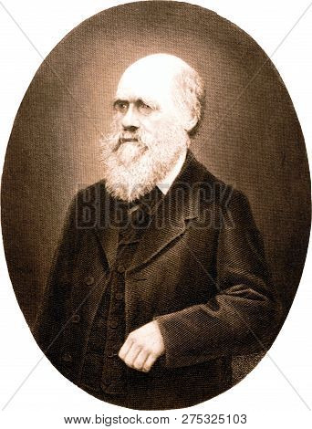 Copper Engraving Of Charles Darwin. The Illustration Is From 4th Edition German Translation Of
