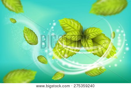 Realistic Illustration Flying Mint Leaf Vector. 3d Image Set Fresh Mint Foliage. Refreshing Effect W