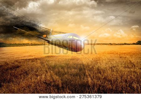Passenger Plane Will Crash Into The Land On The Meadow