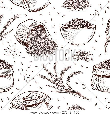 Rice Seamless Pattern. Hand Drawn Bowl With Rice Grains And Paddy Ears Vector Japanese Texture. Illu