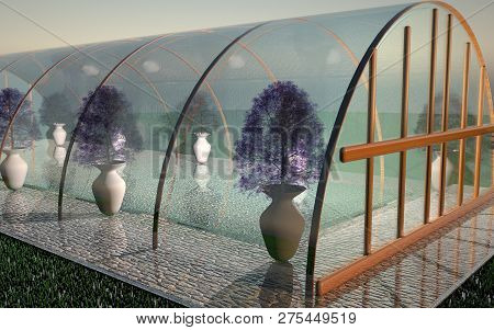 Glass Greenhouse In Close Up