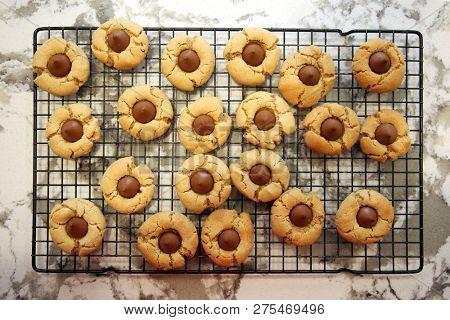 peanut butter cookies. Peanut Butter Blossom Cookie. Chocolate and Peanut Butter cookie. Christmas cookies. fresh baked sweet snack. dessert.