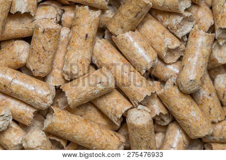 Close-up macro filler for cat pet pet toilet. Pressed wood sawdust egology clean, no smell for the house, the animal goes to the toilet poster