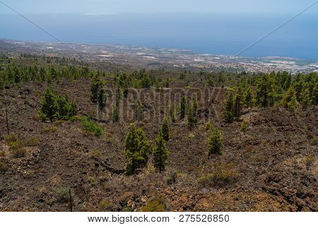 View Of The Western Slope Of The Island. Viewpoint - Mirador De Chirche. Tenerife. Canary Islands. S