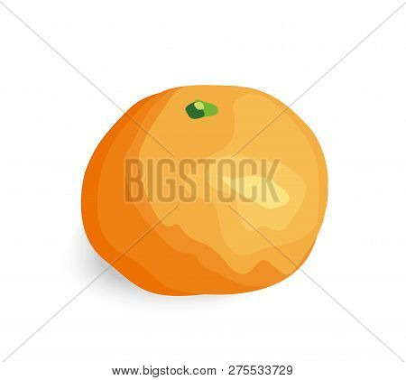 Isolated Orange Mandarin. Vector Illustrarion - 10eps.