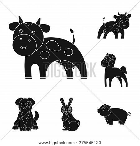 Isolated Object Of Animal And Habitat Sign. Set Of Animal And Farm Vector Icon For Stock.