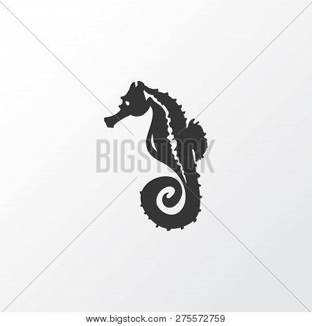 Sea Horse Icon Symbol. Premium Quality Isolated Hippocampus Element In Trendy Style.