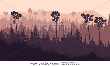 Horizontal Illustration Of Coniferous Twilight Forest With Grass Glade And Hills In Violet Tones.