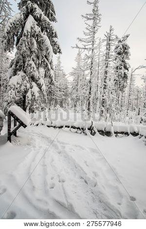 Winter On Velky Polom Hill In Moravskoslezske Beskydy Mountains On Czech - Slovakian Borders With Sn