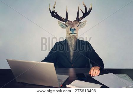 Male Business Man With Deer Head On A Blue Background In The Office At The Desk. Concept Of Irration