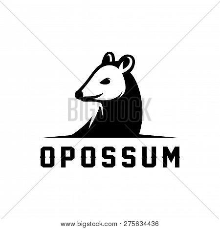 Opossum Vector Illustration Logo Design Template Isolated On White Background