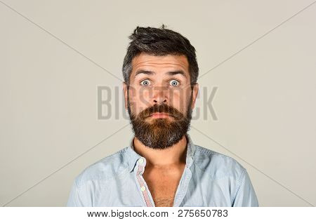 Bearded Man Looking Skeptic Raising Eyebrows. Earnest Expression. Thinking Man With Beard And Mustac