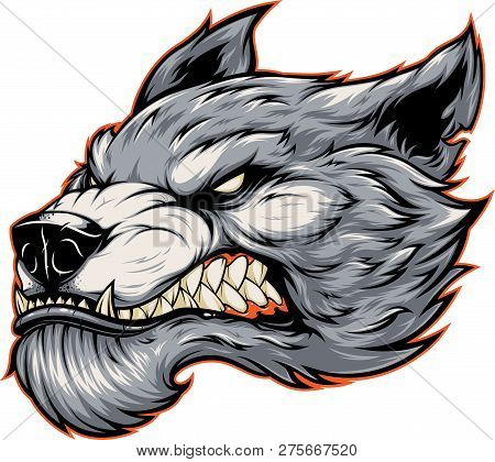 Vector Illustration, Head Of A Ferocious Werewolf Wolf, In Cartoon Style, Isolated On White Backgrou