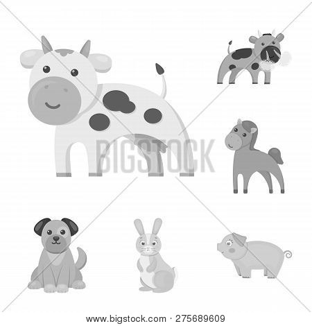 Vector Illustration Of Animal And Habitat Logo. Set Of Animal And Farm Stock Symbol For Web.