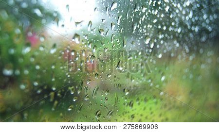 Rain Drops On Glass Rainy Day Window Glass With Rain Drops And Green Tree Nature Background