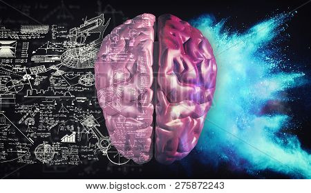 Right And Left Hemisphere Of The Brain . Creative Half And Logical Half Of Human Mind.