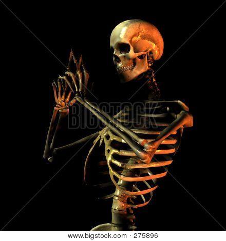 Bone 9