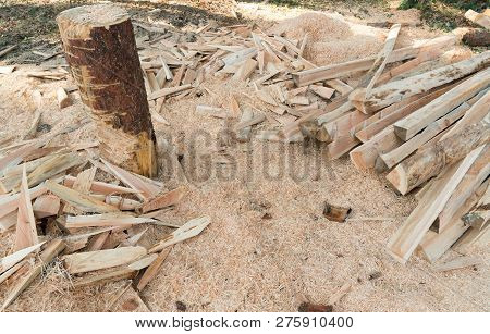 Training Ground For Forest Warden And Lumberjack For Cutting Timber And Logs With A Chainsaw To Make