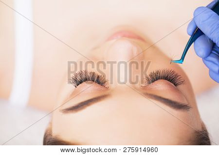 Eyelashes Extensions. Fake Eyelashes. Eyelash Extension Procedure. Professional Stylist Lengthening