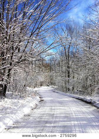 Winding Winter Road