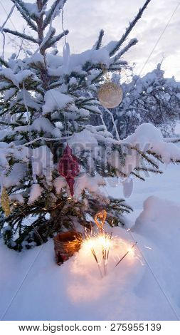 A Snow Covered Natural Spruce Christmas Tree With Illuminated Colorful Lights Outdoors In An Old Age
