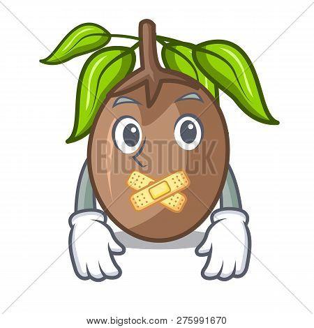 Silent Slice Sapodilla Fruit On Shape Cartoon