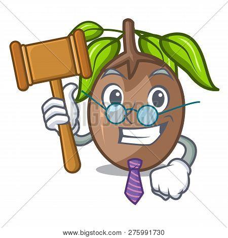 Judge Slice Sapodilla Fruit On Shape Cartoon