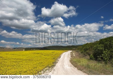 Rural Road, Yellow Rapeseed Field (brassica Napus) And A Blue Sky With White Clouds. Beautiful Lands