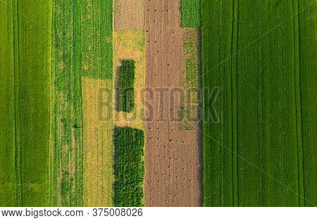 Air View Of Agriculture Fields Agricultural Garden