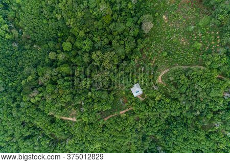 Aerial View Drone Camera Top View Rainforest Trees Ecology With Healthy Environment Concept And Summ