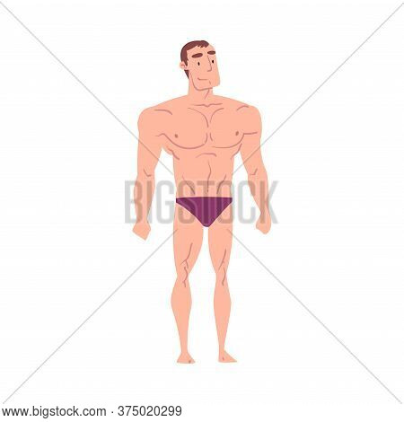 Athletic Muscular Man In Underwear, Inverted Triangle Male Body Type Cartoon Style Vector Illustrati